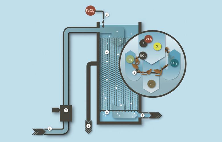 Grafische Darstellung Denitrifikation Abwasserreinigungsanlage Limeco (Dietikon, Limmattal)